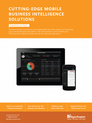 Mobile Business Intelligence Solutions Brochure
