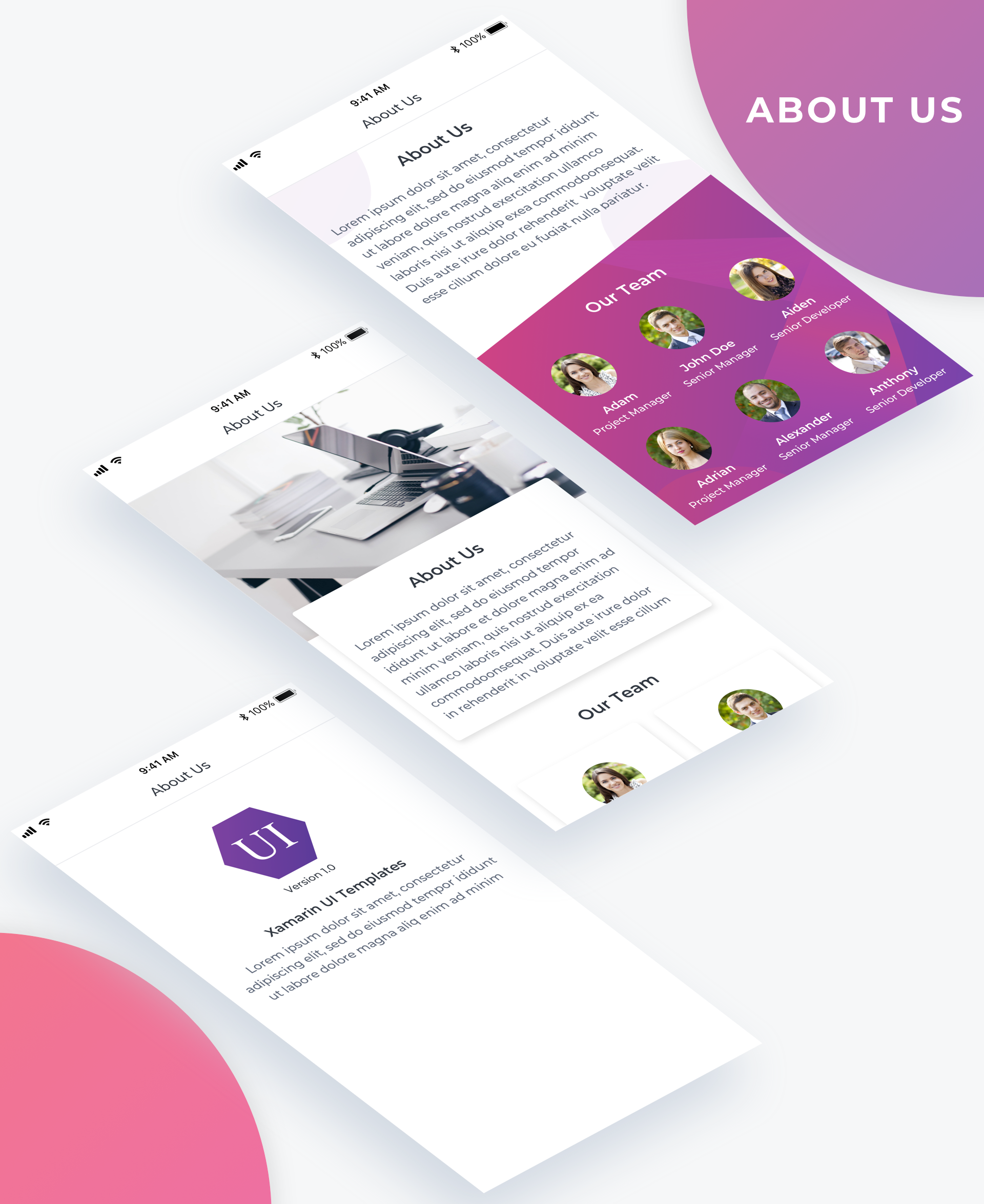 Essential UI Kit - About Page